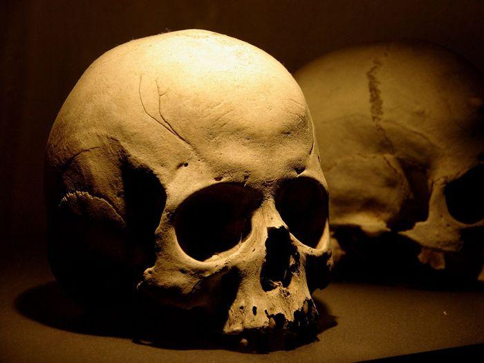 Археологи в Болгарії наткнулися на поховання «вампіра»