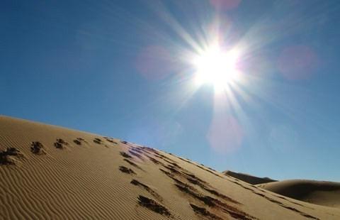 Цивілізація в пустелі Сахара?